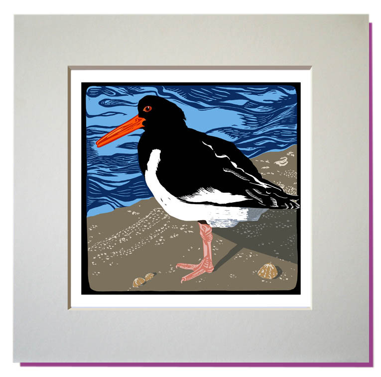 small oystercatcher print